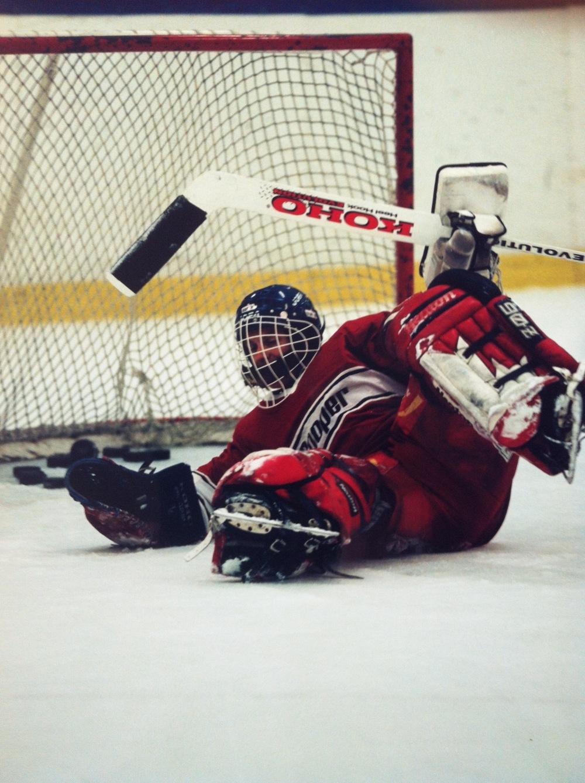 Hockeygrabb3