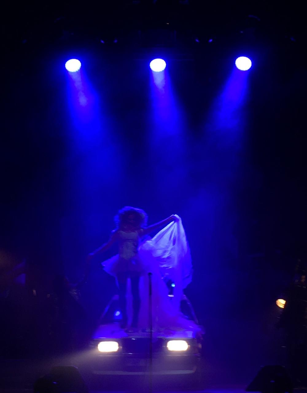 Hedwig2